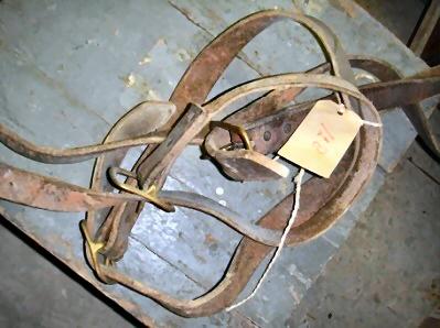 Halsband voor koeien